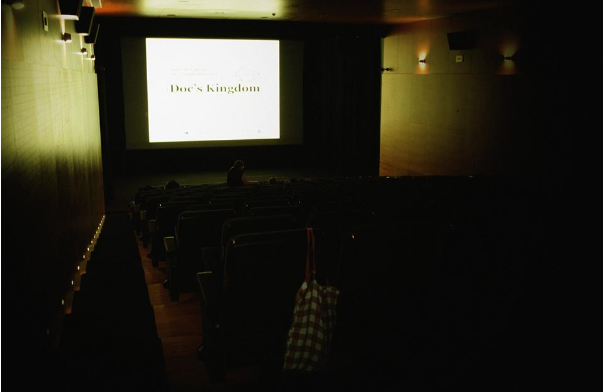 Fotografia de Sabrina D. Marques no auditório municipal de Arcos de Valdevez, onde decorreram as sessões do Doc's Kingdom 2015